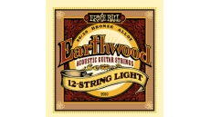 2010 Earthwood 12-String Light