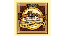 2012 Earthwood 12-String Medium