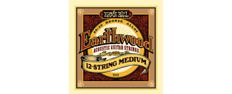 2012 Earthwood 12-String Medium