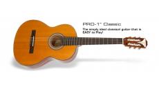 PRO-1 Classic Acoustic