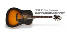 PRO-1 Plus Acoustic