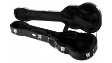 Violin Bass Case
