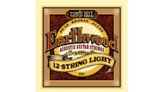 2010 Earthwood 12-String Light