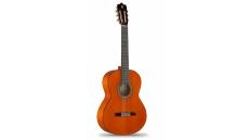 Flamenco Conservatory 4F
